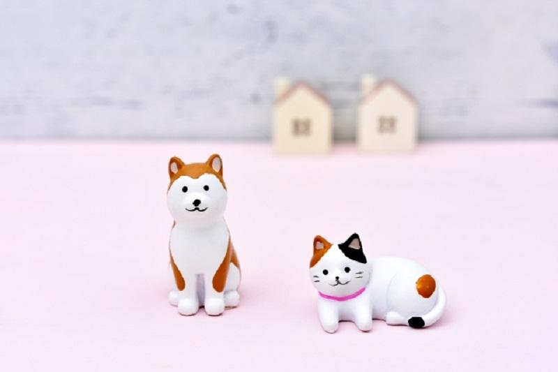 ペット:犬と猫